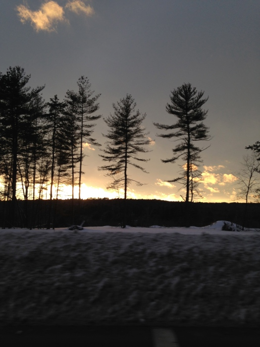 The sun finally peeked out on our way home.