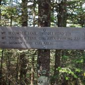 Summit sign.