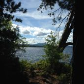 View of Gunstock Mountain from the hammock.
