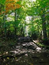 Pretty gnarly trail.