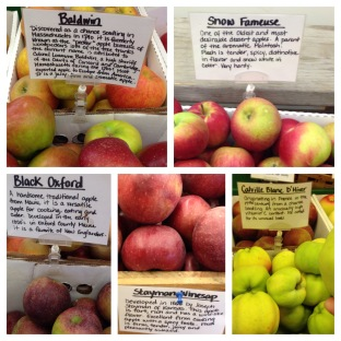 Here are the different gourmet, antique apples we bought.