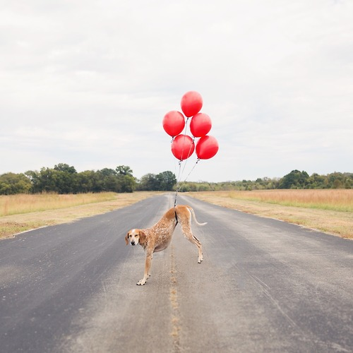 maddie and balloons