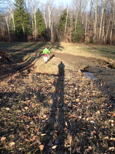 Long shadows on grass and mud.