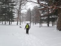 Derek clearing the way through Oak Park