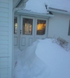 Back yard drifts.