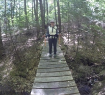 Serendipitous bridge