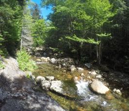 19 Mile River trail follows a river!