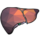 cropped-simplified-liver-outlineicon.png