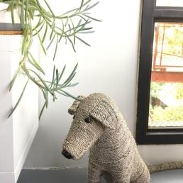 Why so sad, pup?